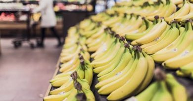 Ini 5 Buah yang Cocok Untuk Dikonsumsi Selama Ramadan