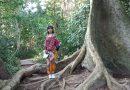 Menjelajahi Hutan ala Petualang di Taman Negara Malaysia